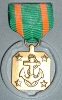 Navy Achievement Medal